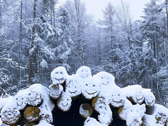 Schneefreuden aus dem Taunus