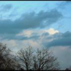 photo-235-389aadc6